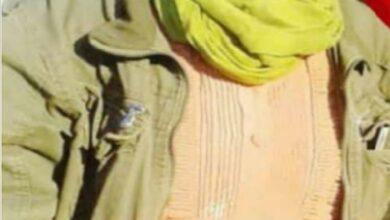 Photo of Çeteyên dewleta Tirk jineke din ji Basûfanê revand