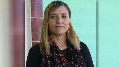 Photo of Bi pêşengtiya TAJÊ Şêwra jinên Iraqê wê bê li darxistin